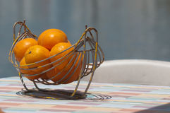Orange Fotografering för Bildbyråer