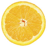 Orange. An orange half ( format Royalty Free Stock Photo
