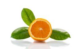 Free Orange Royalty Free Stock Image - 36357456