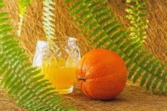 Orange2 Royaltyfri Foto