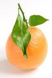 Orange. With leaf, studio isolated over white background Stock Photo
