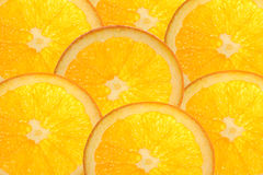 Orange. Stock Photography