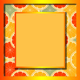 Orange. Vector illustration - framework for the design Royalty Free Stock Photo