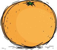 Orange. Fresh sweet orange, vector illustration Stock Images
