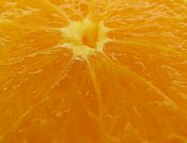 Orange. Slices closeup Stock Photography