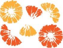 Orange. Illustration of a juicy Orange Stock Photos