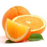 Orange lizenzfreie stockfotos