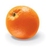 Orange Vektor Abbildung