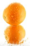 Orange Royalty Free Stock Photos