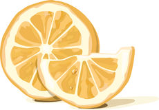 Orange. Vector files, orange, is used as cliparts royalty free illustration