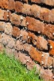 Orange alte Backsteinmauer mit Schnecken Lizenzfreie Stockfotografie
