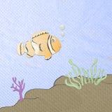 Orange anemonefish cartoon Royalty Free Stock Photo