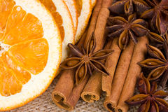 Orange, anise and cinnamon. Sliced dried orange with cinnamon sticks and anise Royalty Free Stock Photo