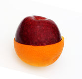 Orange and apple joined together. A half an orange and half a red apple joined against a white background stock image