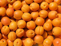 Orange apricot background Stock Photos