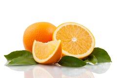 Orange arrangment Stock Photography