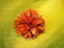 Orange artificial flower Stock Photos