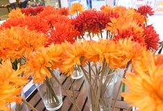 Orange Artificial Gerbera Flowers in Glass Vase Stock Photos