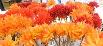 Orange Artificial Gerbera Flowers in Glass Vase Royalty Free Stock Photos