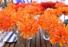 Orange Artificial Gerbera Flowers in Glass Vase Royalty Free Stock Photo