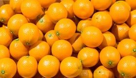 Orange artificielle pour la pièce de cuisine de décoration Photos libres de droits