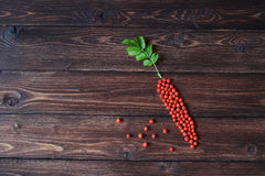 Orange ashberry or rowan as a carrot shape at the wooden table. Orange ashberry or rowan as a carrot shape at the wooden rustic table Royalty Free Stock Photo