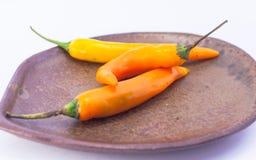 Orange auf weißem bavkground Lizenzfreies Stockfoto