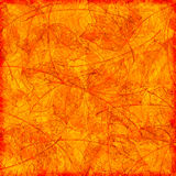 Orange autumn background Royalty Free Stock Images