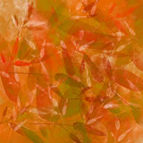 Orange autumn background with leaves pattern Stock Image