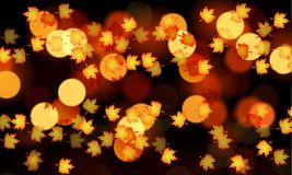 Orange autumn leaves on bokeh background. Vector art illustration Vector Illustration