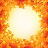 Orange autumn leaves frame design. EPS 8 Stock Photography