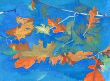 Orange autumn leaves Royalty Free Stock Images