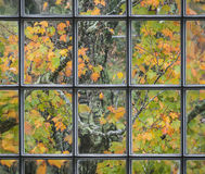 Orange Autumn Leaves Seen Through an Old Church Window. 18th c. window in a New England church looking out into a forest of vibrant fall foliage Royalty Free Stock Photos