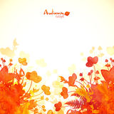 Orange autumn leaves watercolor painted background Stock Photo
