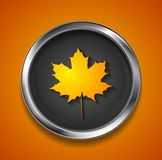 Orange autumn maple leaf on metal button Stock Image