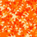 Orange autumn seamless Royalty Free Stock Images