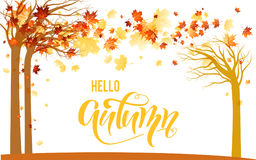 Orange autumn trees. Autumn illustration for design banner, ticket, leaflet, card, poster and so on. Yellow maple leaves and trees silhouette scenery Stock Image