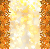 Orange autumnal branch of  tree on abstract background Royalty Free Stock Photo