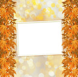 Orange autumnal branch of  tree on abstract background Royalty Free Stock Images