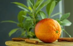 Orange avec de la cannelle Photos libres de droits