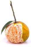 Orange avec le congé Photographie stock libre de droits