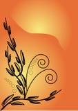 Orange background. Orang background with black pattern Stock Image
