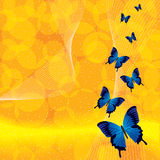 Orange background with butterfly. Orange yellow background with butterfly Stock Photos