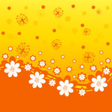 Orange background with daisies Stock Photography