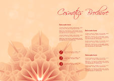 Orange background with flower design for cosmetic brochure Royalty Free Stock Photos