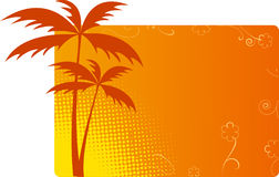 Orange background with palms Royalty Free Stock Photo