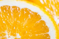 Orange background from slice of an orange fruit texture.  Stock Photos