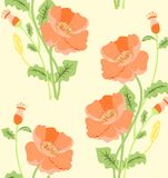 Orange poppy flower pattern. Orange background vector seamless poppy flower pattern Stock Photos