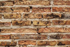 Orange Backsteinmauer Lizenzfreies Stockbild
