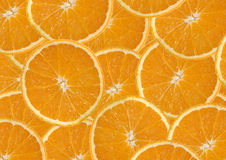 Orange bakgrund royaltyfri bild